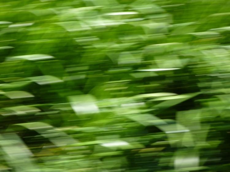 a prettier blur