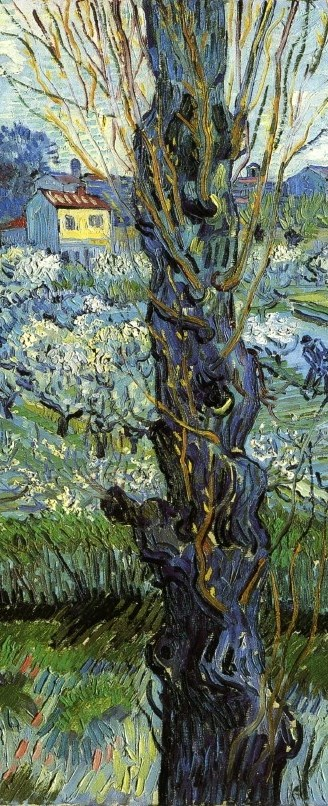 Orchard in bloom with poplars, detail (2)