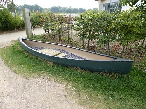 canoe tracks