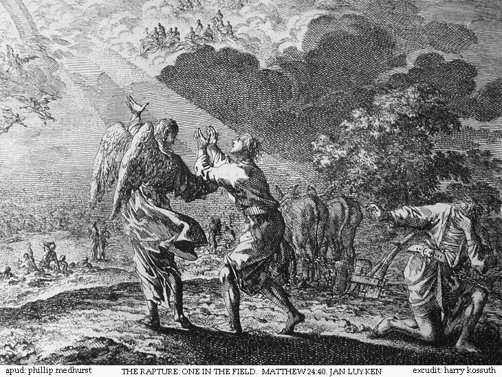 Jan Luyken, the Rapture- one in the field